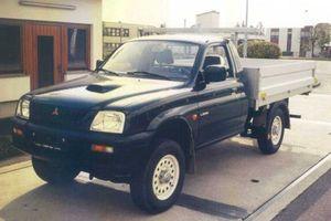 Kleintransporter Mitsubishi Pritschenwagen, herstellt von der Firma Draxler - Leibnitz